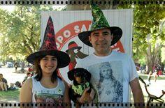 Halloween Salchicha 13.