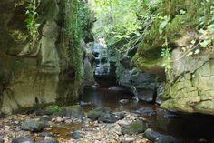 How Stean Gorge, Harrogate