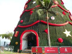 Árvore De Natal - Parque Ibirapuera # 3 T74Brasil