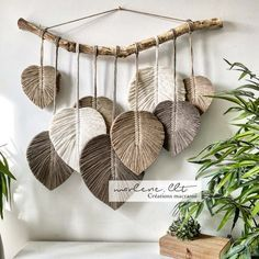 Woodworking Projects Diy, Diy Projects, Wall Hanging Crafts, Free To Use Images, Yarn Thread, Macrame Design, Snake Plant, Cotton Rope, Bohemian Decor