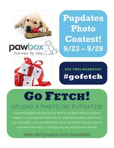 Don't forget to use the hashtag #gofetch to enter our Pupdates Photo Contest!
