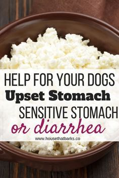 Dogs with diarrhea, sensitive stomachs or an upset stomach. Here are some recipes that work great! food, upset stomach, health dog food recipes 4 Recipes for Dogs Diarrhea or Upset Stomach Homemade Dog Treats, Pet Treats, Homemade Food For Dogs, Healthy Dog Treats, Dog Health Tips, Pet Health, Dog Treat Recipes, Dog Food Recipes, Dog Biscuit Recipes