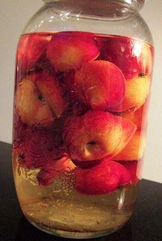 Paradis æble snaps - lige til julebordet! Beer Brewing, Home Brewing, Smoothie, Cider Cocktails, Good Food, Yummy Food, Danish Food, Spiritus, Vodka