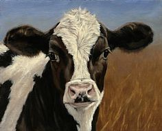 California Dairy farms, 99 percent family owned and new Holstein Calf painting by Denise Rich Cow Paintings On Canvas, Animal Paintings, Acrylic Paintings, Denise Rich, Cow Photos, Cow Pictures On Canvas, Holstein Cows, Cow Face, Farm Art