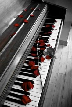 Quick write: mood and setting piano with rose petals.How did the rose petals wind up on the piano? The Piano, Piano Y Violin, Piano Keys, Piano Music, Piano Room, Piano Girl, Piano Man, Sound Of Music, Music Is Life