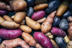 Plant and grow potatoes – the ultimate guide – Growing Potatoes - Growing Plants at Home Blue Potatoes, Types Of Potatoes, Sweet Potato Varieties, Potato Picture, Starch Foods, Starch Recipes, Healthy Fats, Healthy Recipes, Purple Food