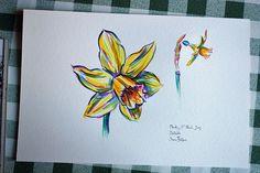 flowers paintings of daffodil -