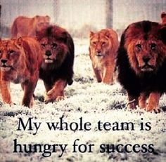 They all want to be fed! #success #motivation