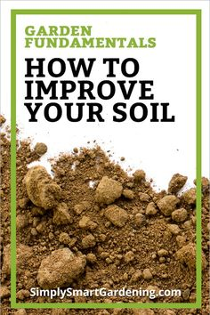 Want to improve your garden soil, but don't know where to start? Follow my step-by-step instructions for fixing your soil and you can eliminate 80% of your garden problems. You'll learn how to prepare your soil for planting by testing and improving it.   Click to discover the best amendment to use on clay or sandy soil, and the four things you should never do to your soil. #gardensoil #gardening101