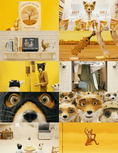 "Fox "" We're all different. Wes Anderson Style, Wes Anderson Movies, Color In Film, Fantastic Fox, Film Movie, Cinema Film, Indie Movies, Film Stills, Mellow Yellow"