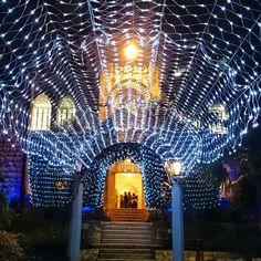 LEBANON, BEIRUT, AUB CAMPUS AT CHRISTMAS TIME