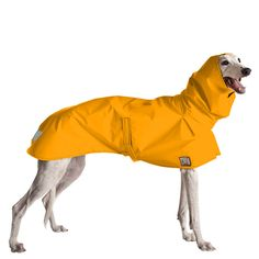 Greyhound Rain Coat (Yellow)