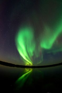 Thanksgiving Aurora by Tendayi Chakanyuka on 500px