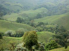 El paisaje cultural cafetero de Colombia fue declarado Patrimonio de la Humanidad por la Unesco en 2011
