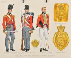 The (The King's Own) Regiment of Foot; Officer of Grenadier Company and Private of Battalion Companies - Field Officer - 1819 British Army Uniform, British Uniforms, Red Coats, Empire, Battle Of Waterloo, Rule Britannia, Military Uniforms, Napoleonic Wars, Reggio