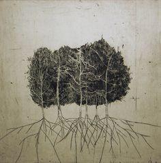 """Ritzuko Ozeki. Forest, 2012. Etching, 20 x 20""""."""