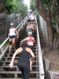 Santa Monica Stairs, Boot Camp, LA Fitness Programs, Personal Training, La Weight Loss, WEight loss fat, lose weight, Chelsea Settles, diets...