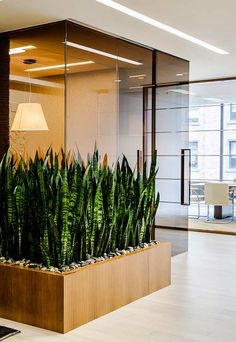 Proceed For Interior Planting to Improve Workplace Efficiency 33 Office Space Design, Office Interior Design, Office Interiors, Interior Design Living Room, Modern Interior, House Plants Decor, Plant Decor, Wall Design, House Design