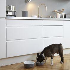 MiaCara ceramic dog bowl TONDO slate