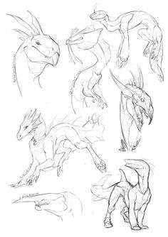 Dragon doodles by Aivomata on DeviantArt Animal Sketches, Animal Drawings, Art Sketches, Art Drawings, Creature Concept Art, Creature Design, Art Reference Poses, Drawing Reference, Dragon Poses