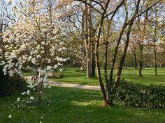 baden-baden sehenswuerdigkeiten - 1 (1) Landscape Photography, Nature Photography, Parks, Hotels, Germany, City, Tips, Scenery Photography, Landscape Photos