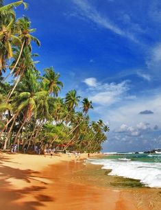 Good budget tips for visiting Sri Lanka! I had know idea the country had so many gorgeous beaches.