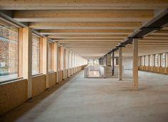 Holz-Hybrid-Bausystem: Illwerke Zentrum Montafon, Rohbau