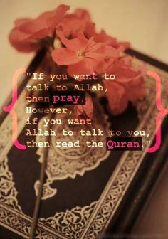 Real Life Muslim Girl
