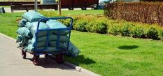 bags-of-mulch Bags Of Mulch, Wood Chip Mulch, Types Of Mulch, Rubber Mulch, Organic Mulch, Crushed Stone, Weed Seeds, Landscape Fabric