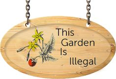 This Garden Is Illegal