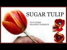 """Thank you for watching The Confectionery Gallery's """"How to Make a Sugar Tulip ."""" tutorial, where you will learn how to make a gumpaste tulip using NO CUTTE. Fondant Flower Tutorial, Fondant Figures Tutorial, Fondant Flower Cake, Cake Tutorial, Fondant Bow, Fondant Cakes, Sugar Paste Flowers, Icing Flowers, Cake Flowers"""