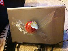 I got an apple!!!