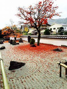 Koumyouzenji Fukuoka Dazaifu. #autumnleaves