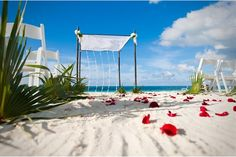 Wedding on the beach?  Thank you for the pics Topical Destination Management Company.