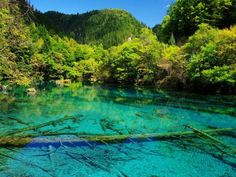 Crystalline Turquoise Lake in Jiuzhaigou Valley China
