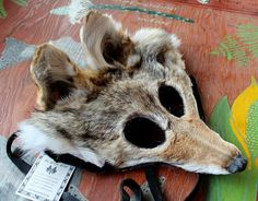 Real eco-friendly wild coyote fur mask  shaped and glasses