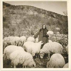 Κωνσταντίνω , σύζ. Βασ.Αδαμόπουλου 1966, από το χωριό Κουρουνιού Αρκαδίας Γεννήθηκε με το στίγμα της ντροπής να είναι κορίτσι.Πάλεψε για να κερδίσει μια θέση στη κοινωνία. Η ΜΟΝΗ που έχει δικαίωμα να μας κοιτάει στα ίσα , κατάματα . Γιατί το Χρέος της το έκανε με το παραπάνω ...και χωρίς πληρωμή(ανάρτηση στο F/Β από Βαγγέλη Μητράκο)