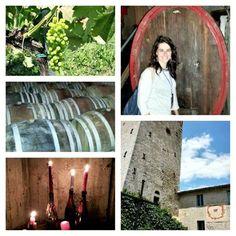 Vigne e cantine di @RoccadiFabbri #InMontefalco foto di @AleGiovanile