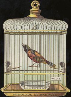Preparado De Wampole (Wampole's Preparation), trade card