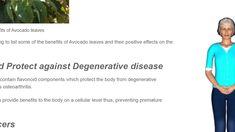 Avocado leaves avocado leaves avocado leaves Avocado Leaves, Avocado Benefits, Degenerative Disease, Cellular Level, Positivity, Optimism