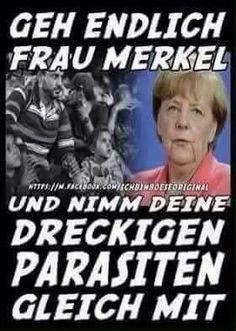 Anti Asylanten Sprüche