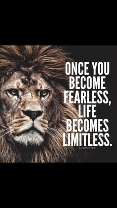 Inspirational Quotes About Life and Motivation that Everybody Needs. { is My Favorite} – The Only Downey Lion Quotes, Me Quotes, Motivational Quotes, Inspirational Quotes, Qoutes, Night Quotes, Quotes Images, Funny Quotes, Quotes With Lions