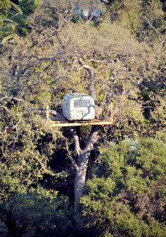 """ Here's an ""only in LA"" art piece for you. Not sure what to say about it, other than that it's an Airstream trailer in a oak tree 30 feet off the ground. It just went up in the last couple months."