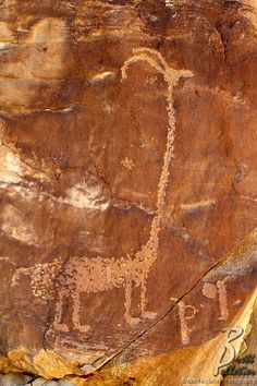 Petroglyphs - Nine Mile Canyon, Utah