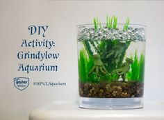 Summer's here, and what better way to cool off than by taking a dip in the Black Lake surrounding Hogwarts? One problem: it's full of grindylows. DiY your own aquarium version for Harry Potter fans.
