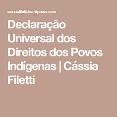 Declaração Universal dos Direitos dos Povos Indígenas | Cássia Filetti