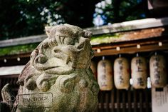 Besides the Palace itself another beautiful thing about the Imperial Palace in Kyoto is its temples and gardens. Details colours moss...you can almost smell the centuries. Love the bokeh of the Nokton. Kyoto Japan. 2015 ----------------------------------------------- More at pakdock.com PAk DocK in Pinterest | | PAk DocK in Instagram PAk DocK in facebook | | PAk DocK in twitter | | PAk DocK in Tumblr PAk DocK