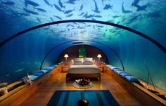 Sleeping with the fishes! This is a honeymoon suite at the Conrad Maldives Rangali Islands Resort. This is very cool but hopefully Jaws wouldn't swim by that might make you have nightmares.