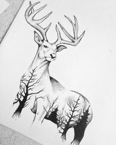 Deer this is what I want for my grandp. Deer this is what I want for my grandpa. Hirsch Illustration, Deer Illustration, Art Drawings Sketches, Animal Drawings, Tattoo Sketches, Anchor Drawings, Drawing Animals, Deer Drawing, Nature Drawing