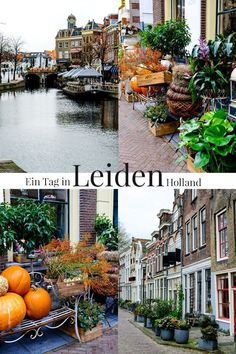 A morning in the pretty town of Leiden in Holland. - A day in Leiden Holland Europe Destinations, Europe Travel Tips, European Travel, Holiday Destinations, Travel Hacks, Leiden Holland, Leiden Netherlands, Holland Netherlands, Tour En Amsterdam